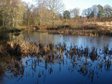 Stroud, Hampshire - Stroud's Pond, Yateley Common © Alan Hunt